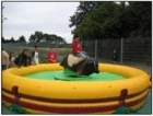 RODEO-BULLE