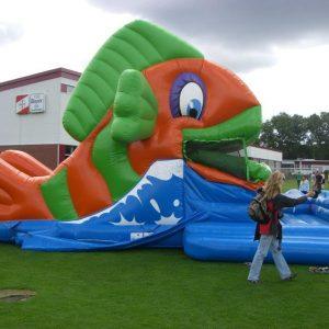 Riesenrutsche Fisch