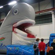 Riesenrutsche Wal