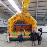 Springburg Giraffe