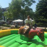 Pferde Rodeo Anlage